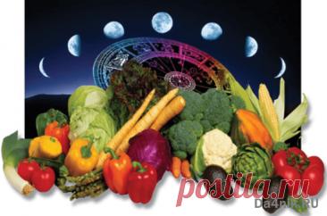 Какие знаки зодиака самые плодородные и благоприятные для посева? | 6 соток