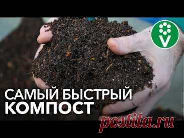 КОМПОСТ СОЗРЕЕТ В 10 РАЗ БЫСТРЕЕ! Готовим ускоритель компоста своими руками
