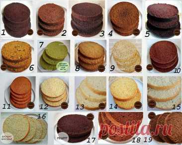 Еще больше рецептов бисквитов, как основа для ваших тортов.   Марина Белозерова   Яндекс Дзен