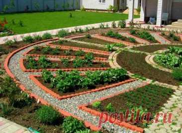 Из какого материала лучше сделать грядки на даче? Описание и фото | Огород и сад. Полезные советы | Яндекс Дзен