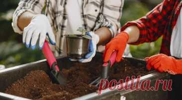 7 причин начать готовить компост на даче (если вы еще этого не делаете) Рассказываем, почему на каждом участке обязательно должна быть компостная куча.