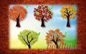 Тест на отношения - Какой человек Вам нужен рядом - Выберите дерево - ГОРНИЦА