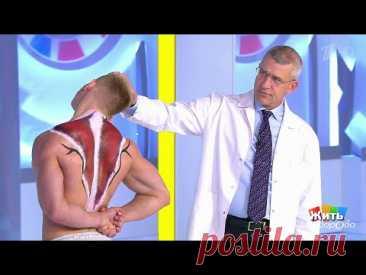 Минута здоровья: упражнение от боли в шее. Жить здорово! 10.10.2019