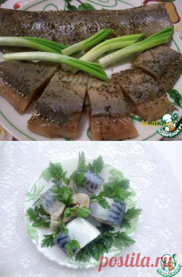 Малосольная сельдь мокрым способом – кулинарный рецепт