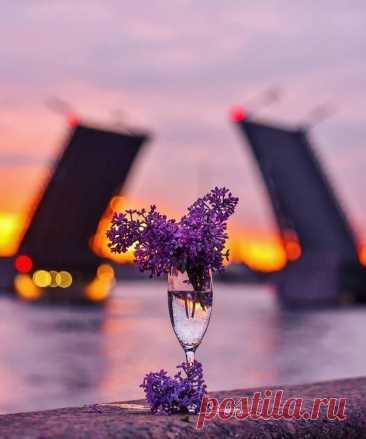 ༺🌸༻Будьте счастливы. Просто так. Потому, что впереди новый день, Потому, что жизнь продолжается!
