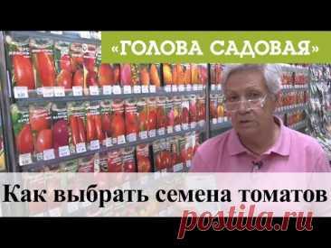 Голова садовая - Как выбрать семена томатов