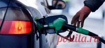 3 правила правильной заправки, о которых знают не все Далеко не все водители знают как правильно заправлять свой автомобиль на заправке, и поэтому возникают проблемы, например, какой бензин 92 или 95 заливать и на какой заправке это лучше сделать.
