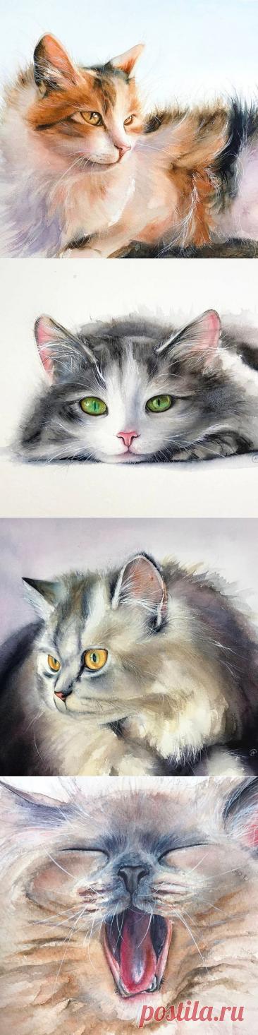 Позитивные акварельные кошки Maria Raczynska