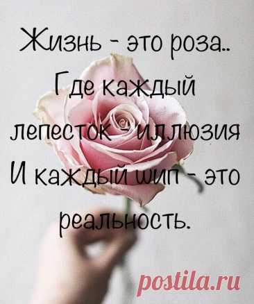 Жизнь - Это роза!
