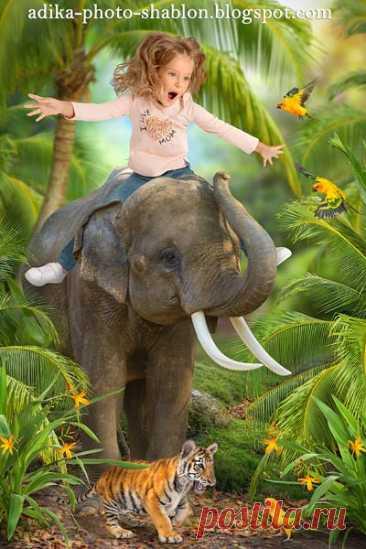 """Детский летний фотошаблон в PSD """"Сафари на слоне"""""""