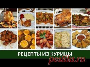 САМЫЕ ВКУСНЫЕ рецепты из КУРИЦЫ в духовке и на сковороде. Целая, на банке, бедра, филе, крылышки