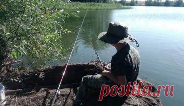 Хитрости рыбалки для начинающих | Баркас | Охота и Рыбалка | Яндекс Дзен