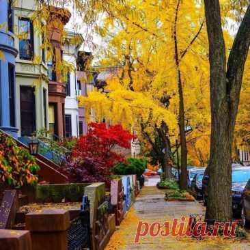 ღПо улицам бродил Октябрь...