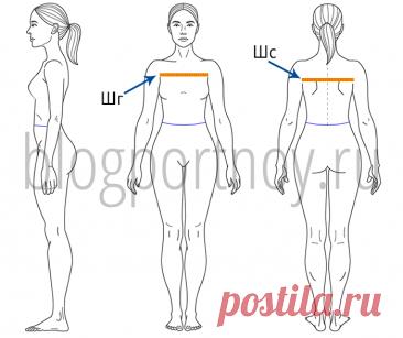Мерки для построения выкройки плечевого изделия Как правильно снять мерки для построения выкройки платья, блузки, жакета.