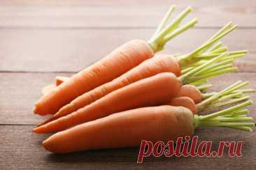 Советы по подкормке моркови в июле, чтобы она была сладкой и крупной | Азбука огородника | Яндекс Дзен