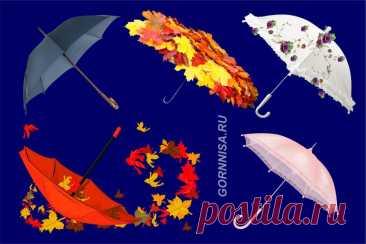 Выберите зонт - осенний личностный тест - ГОРНИЦА - выбери и узнай