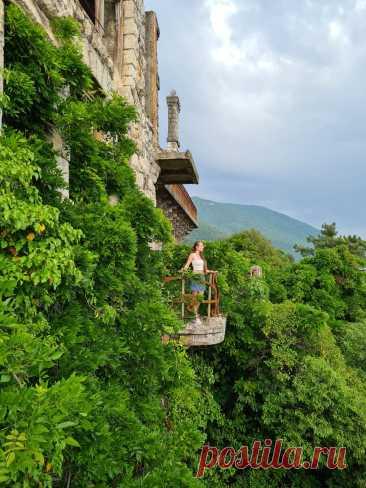 Съездили на неделю в Абхазию. Рассказываю свои впечатления. | Возбужденная солнцем | Яндекс Дзен