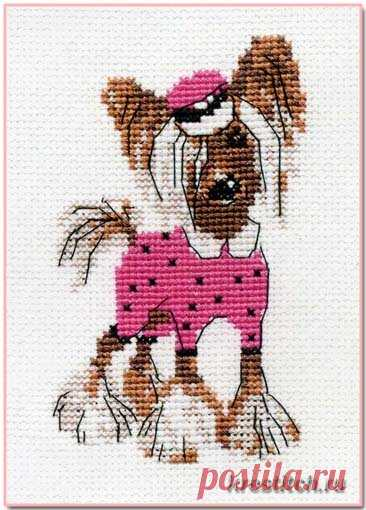 Хохлатая модница (арт.П-023 Риолис) набор для вышивания крестом купить в Stitch и Крестик