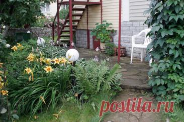 Там где сырость и «ничего не растёт»... Что посадим в тени дачного участка? Бывает, что на участке слишком много тени, сырость и «ничего не растёт». Однако и в этом случае сад может быть необыкновенно красивым: остановите выбор на теневыносливых растениях.