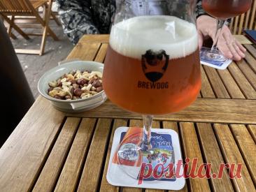 Три любимых пива в стиле IPA, которые никогда не разочаруют. Стабильный вкус и качество!   Калдырье   Яндекс Дзен