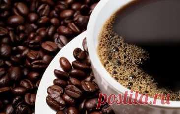 Вы любите кофе-интересные факты | ЛЮБОВЬ ПРУСИК | Яндекс Дзен