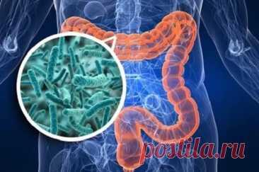 10 способов восстановить микрофлору кишечника без лекарств - Народная медицина - медиаплатформа МирТесен