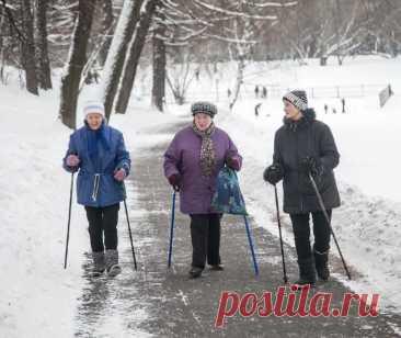 Что кроме пенсии должны пенсионерам – актуальные законы и цифры В России много лиц пенсионного возраста, и выплаты у них разные. Их размер зависит от вида пенсии, количества белого стажа, профессии ...