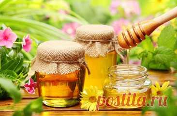 ༺🌸༻Мёд польза и вред для организма: мед при лечении заболеваний, применение в косметологии, с орехами, молоком, лимоном