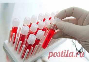 Почему у людей разные группы крови? | Наука и жизнь