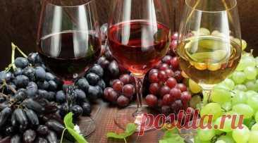 Не судите о вине по этикетке! Советы эксперта, как выбирать качественное вино   Росконтроль   Яндекс Дзен