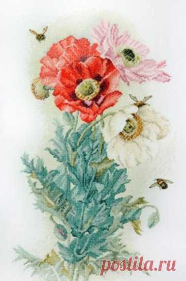 схема для вышивки крестом маков с пчелами Цветок ангелов