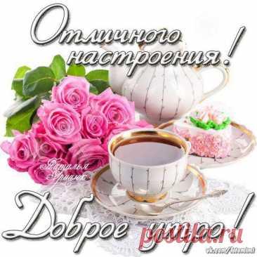 Tatyana Frolova's photos