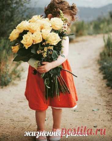 Начинайте жизнь с утра Обязательно с добра! Добрых слов и добрых взглядов. Доброта приносит радость, Нежность, искренность, участье, Для души кусочек счастья... ©