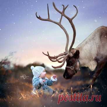 Дети и животные, ч.10 – Блог. Run, пользователь Марина Николаева | Группы Мой Мир