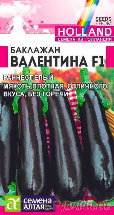 Баклажан Валентина F1, 10 шт. Seminis, купить в интернет магазине Seedspost.ru