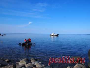 Необитаемый остров с маяком в Белом море... Есть места на август! | Дурушка вяжет. Живу. Люблю. | Яндекс Дзен