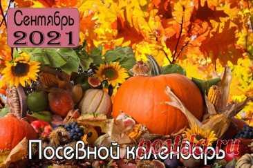 Лунный календарь посадок и работ в саду и огороде на сентябрь 2021 года
