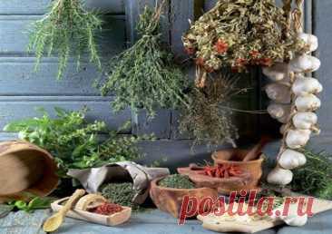 Выбор пряностей - Мужской журнал JK Men's Выбирая зеленые пряные травы, обращайте особое внимание на их свежесть. Лучше отказаться от покупки, если вы видите вялые пожелтевшие листья,