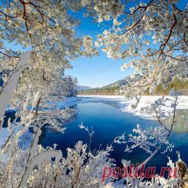Дай Бог всего нам вовремя и в меру: Метель – Зимой, Весною – Первоцвет, В Отчаянье – Уверенность и Веру, В Любви и Счастье – долгих-долгих лет..