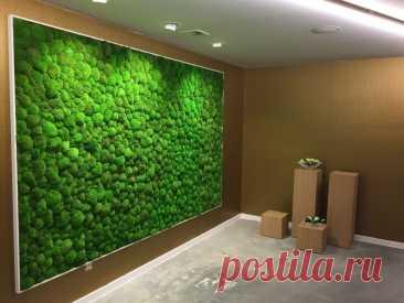 Живая стена в интерьере квартиры своими руками: фито стена из искусственных растений в кухне, картина из цветов в гостиной или звукопоглощающее полотно из мха в зале