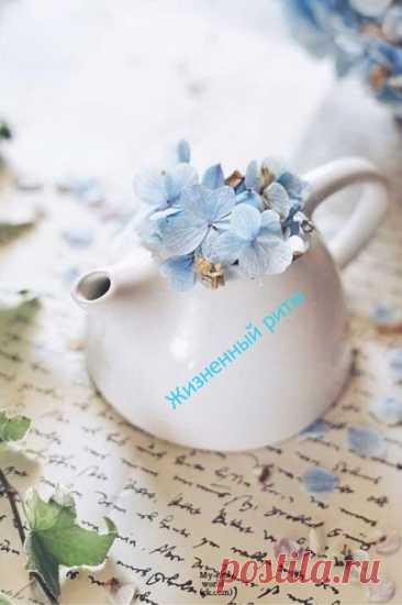 Начинайте жизнь с утра обязательно с добра, Добрых слов и добрых взглядов - Доброта приносит радость. Нежность,искренность, участье - Для души кусочек счастья. Теплоту с любовью в дом - С добрым утром! С добрым днем! ©