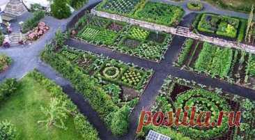 Как сделать красивый дизайн огорода своими руками: 100 фото - Дача Своими Руками Красивыйдизайн огорода поможет вамсделать огород не только более привлекательными удобным, но и б