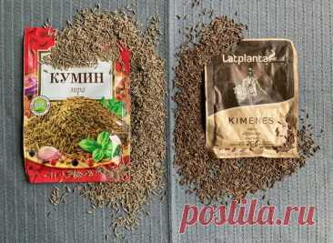 (99+) Дух и вкус плова - это морк... - блог пользователя Любовь Ивановна