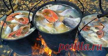 How to cook a fish soup on a fire