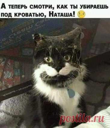 Домовенок)))