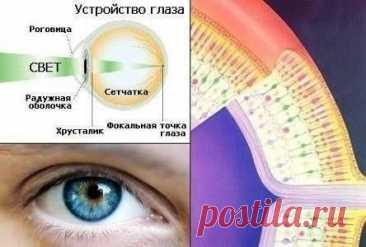 La metodología del mejoramiento de la vista