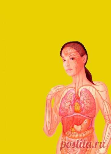 Проблемы с пищеварением, которые могут указывать на инфаркт - Народная медицина - медиаплатформа МирТесен Если у человека происходит инфаркт, счет времени может идти на минуты. И чем быстрее ему окажут медицинскую помощь, тем выше вероятность благоприятного исхода. Но сердечный приступ может проявляться не только болями в области сердца. Дисфункции пищеварительного тракта тоже являются симптомами