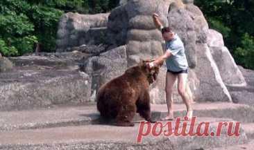 Как в России встречают медведей! Невероятное безумство!