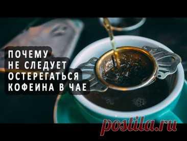 Почему не следует остерегаться кофеина в чае