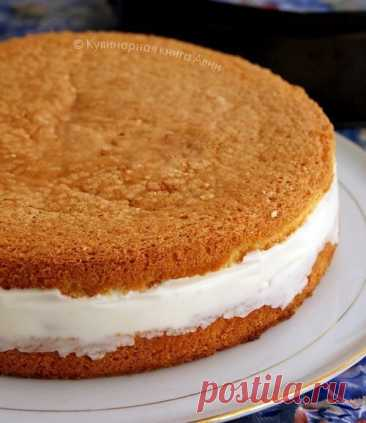 Cake with the most delicate cottage cheese cream\u000a\u000aIt is required:\u000aFor a biscuit:\u000a- 5 eggs\u000a- 1 Art. sugar\u000a- 1 Art. of flour\u000a- 1 tsps of a grated dried peel of a lemon\u000aFor cream:\u000a- 20 g of gelatin\u000a- 150 ml of water\u000a- 300 gr cottage cheese\u000a- 5 tablespoons of icing sugar\u000a- 250 ml of cream\u000a- tinned pineapples\u000a\u000aPreparation:\u000a\u000a1. To beat whites with sugar to firm peaks. On one to enter yolks, it is good to shake up.\u000aParts to add flour and to mix accurately.\u000aTo pour out dough in the demountable form laid by paper.\u000aDo not forget to twist f...
